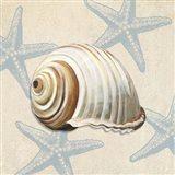 Ocean Gift III Art Print
