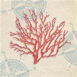 Ocean Gift IV Art Print