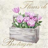 Fleurs de Bretagne Art Print