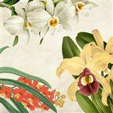 Panneau Botanique VIII Art Print