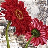 Red Gerberas III Art Print