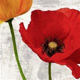 Summer Poppies I Art Print