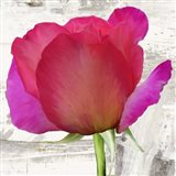 Spring Roses II Art Print
