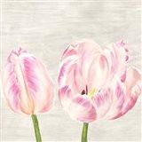 Classic Tulips I Art Print