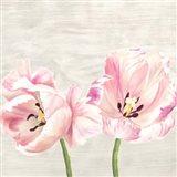 Classic Tulips II Art Print