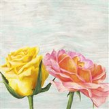 Funky Roses I Art Print