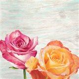 Funky Roses II Art Print