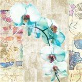 Kaleidoscope Orchid II (detail) Art Print