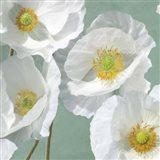 Poppies on Mint I Art Print