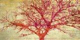 Coral Tree Art Print