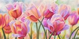 Tulips in Wonderland Art Print
