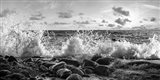 Waves Crashing, Point Reyes, California (detail, BW) Art Print