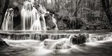 Waterfall in a forest (BW) Art Print