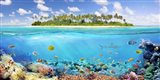 The Coral Reef Art Print