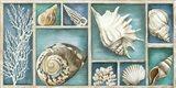 Collection of Memories Art Print