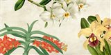 Panneau Botanique III Art Print