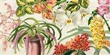 Panneau Botanique IV Art Print