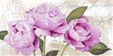 Grand Jardin Royal Art Print