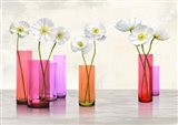Poppies in crystal vases (Purple palette) Art Print