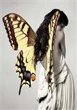 Winged Beauty #3 Art Print
