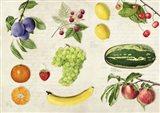 Fruits du Monde Art Print