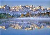 Allgaeu Alps and Hopfensee lake, Bavaria, Germany Art Print
