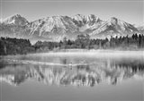 Allgaeu Alps and Hopfensee lake, Bavaria, Germany (BW) Art Print
