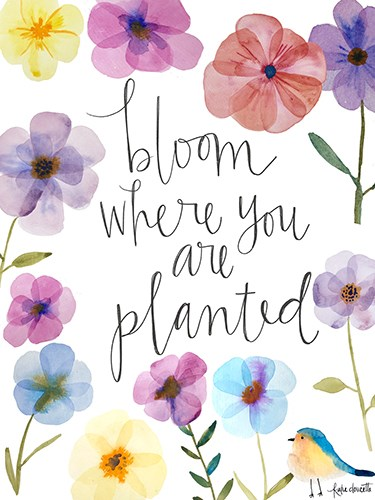 Bloom Where You Are Planted Art Print by Doucette