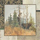 Brown Bears with Border Art Print