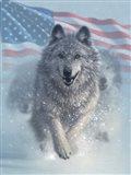 Running Wolves America Art Print
