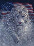 White Tiger America Art Print