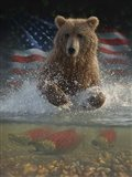 Brown Bear Fishing America Art Print
