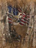 Whitetail Buck America Art Print