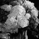 Rhapsody in Bloom - B&W Art Print