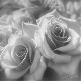 Rose Pair B&W Art Print