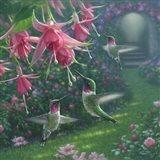 Hummingbird Haven - Square Art Print