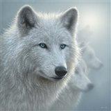 Arctic Wolves - Whiteout Art Print