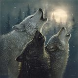 Howling Wolves - In Harmony Art Print