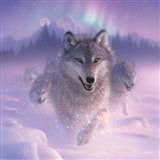 Running Wolves - Northern Lights - Square Art Print