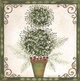 Topiary IV Art Print