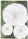 Big White Flowers II Art Print
