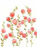 Peach Olive Art Print