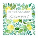 Organic Lemons Art Print