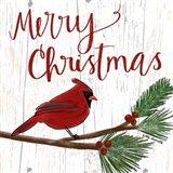 Christmas Cardinal Art Print