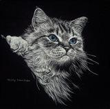 Kitten II Art Print