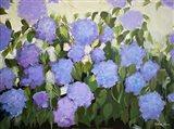 Purple and Blue Hydrangeas Art Print