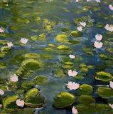 Lily Pads II Art Print