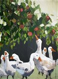 Apples and Ducks Art Print