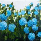 Blue Hydrangeas II Art Print