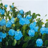 Blue Hydrangeas III Art Print